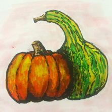 Autumn Gourds Illustration