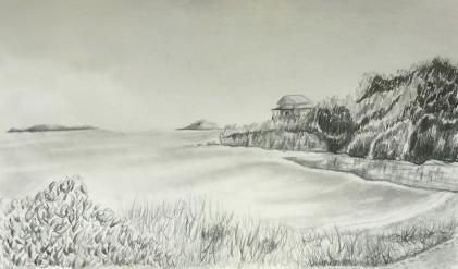 Maine Coast Drawing