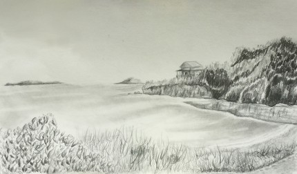 Maine Coast Drawing