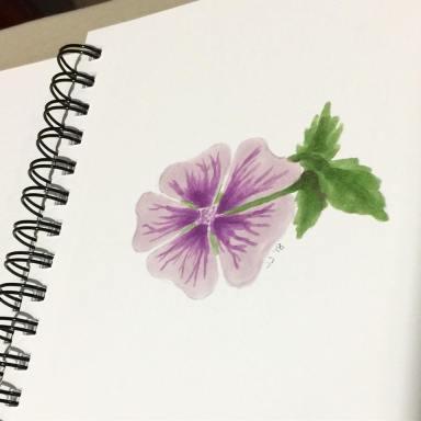 Sketchbook81